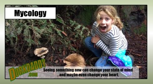 mycology fixed header