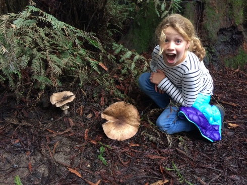 Mushrooms the size of dinner plates.